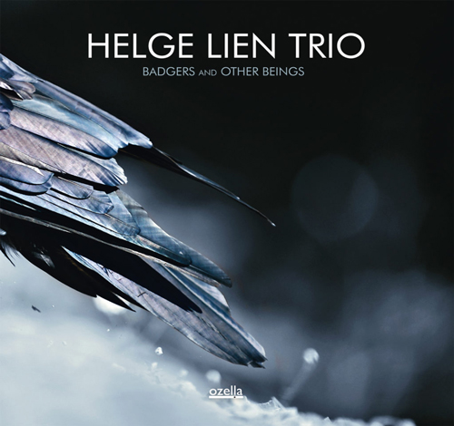 HELGE LIEN TRIO - badgers and other beings