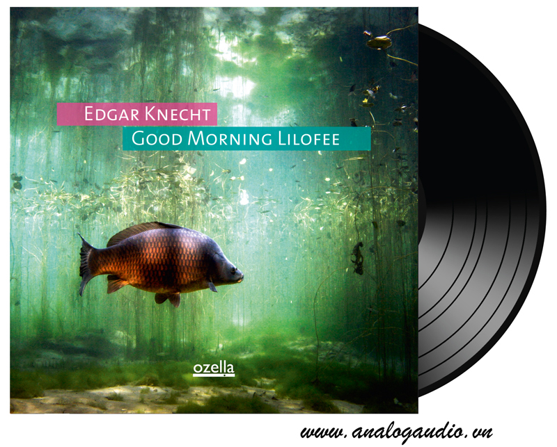 Edgar Knecht - good morning lilofee